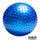 按摩球顆粒球觸覺球大龍球兒童感統訓練健身...