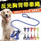 L號牽繩 寵物反光胸背帶 寵物牽繩 寵物胸背 貓牽繩 狗牽繩 狗散步牽繩 寵物外出 外出 遛狗 反光