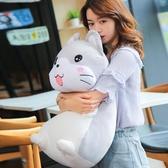 (大號 60CM)可愛大號狗狗公仔抱枕 玩偶毛絨玩具 韓版搞怪布娃娃【交換禮物】