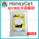 寵物FUN城市│Honey Cat  超...