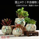 花盆陶瓷肉肉塑膠創意室內綠蘿多肉植物花盆...
