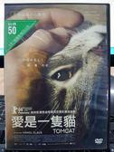 挖寶二手片-P10-024-正版DVD-電影【愛是一隻貓】-柏林影展泰迪熊獎最佳劇情片