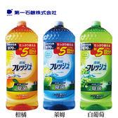 第一石鹼 濃縮除菌洗碗精 970ml大容量 多款可選 日本製【PQ 美妝】