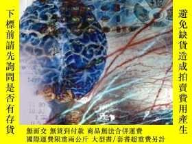 二手書博民逛書店罕見NeuropsychologyY364682 Elias, Lorin J.  Saucier, Debo