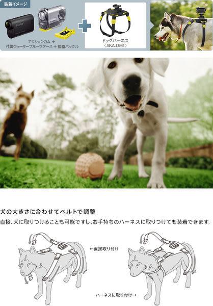 【震博】Sony AKA-DM1 寵物固定帶 (台灣索尼公司貨)