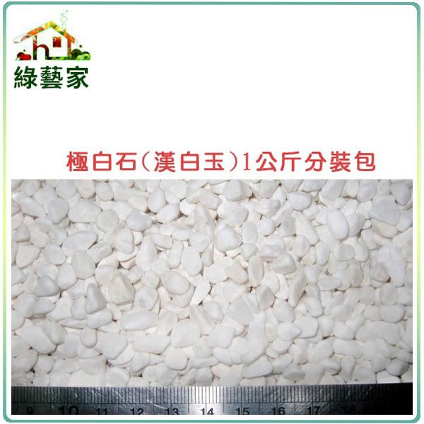 【綠藝家】極白石2分(漢白玉.特白石.鵝卵石.白卵石)1公斤分裝包