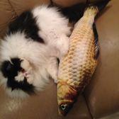 貓玩具貓薄荷逗貓玩具魚貓抱枕草魚寵物仿真毛絨貓咪魚玩具