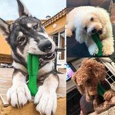狗狗磨牙玩具大型犬磨牙棒刷牙神器耐咬幼犬寵物牙刷【時尚大衣櫥】