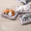 SISI【G9009】現貨仿真玩偶活性碳包除甲醛異味汽車、居家襬件裝飾毛絨玩具公仔交換禮物