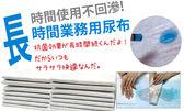PetLand寵物樂園《寵物尿布》長時間業務用尿布(吸收凝膠添加) 單包入