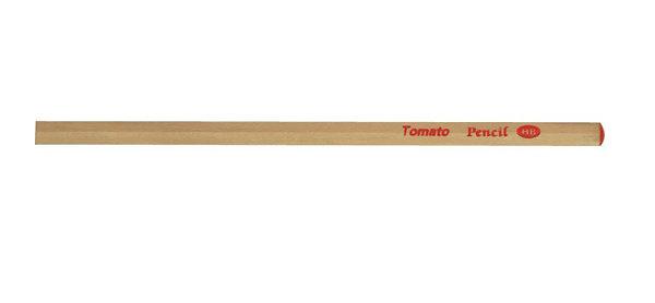 Tomato 小三角HB原木 鉛筆 48支/筒 P-011 3085