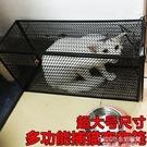 人道救助全自動捕貓籠 捉貓籠 多功能誘捕籠 尋貓神器 寵物貓籠 1995生活雜貨NMS
