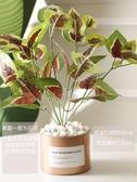 向日葵蝴蝶蘭仿真塑料花擺件餐桌花輕奢裝飾客廳植物盆栽擺設Mandyc