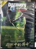 挖寶二手片-P12-359-正版DVD-紀錄【雨林中的傳奇】-Discovery