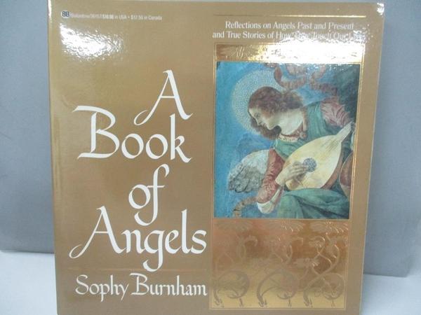 【書寶二手書T1/宗教_DMX】A Book of Angels: Reflections on Angels Past and..