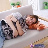 毛絨玩具抱著睡覺的喵星人仿真貓咪抱枕公仔【櫻桃菜菜子】