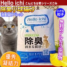 【 zoo寵物商城】國際貓家HelloI...