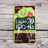 日本零食糖果正榮_葡萄乾可可巧克力45g【0216零食團購】4901638790720
