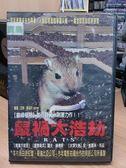 挖寶二手片-J14-008-正版DVD*電影【鼠禍大浩劫】-羅夫赫佛斯*安凱薩琳布茲