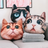 貓咪抱枕辦公室靠枕可愛靠背墊汽車暖手抱枕被子兩用插手枕頭午睡  ATF  極有家