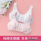 純棉小女孩抹胸中大童學生胸罩胸衣