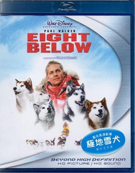 【停看聽音響唱片】 【BD】極地長征 Eight Below