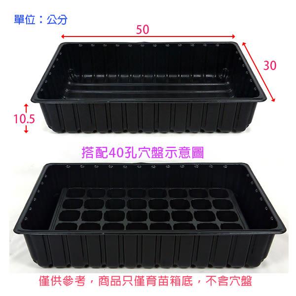 【綠藝家】育苗箱底33*50公分(加厚款)