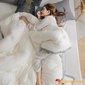 被子冬被芯冬天加厚保暖棉被雙人被單人水洗棉純色素色被褥子【小獅子】