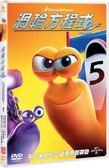 渦輪方程式 DVD | OS小舖