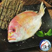 【漁季】嚴選野生赤鯮*1(350g±10%)