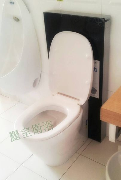 【麗室衛浴】瑞士GEBERIT 魔立石馬桶明裝專用水箱+圓形馬桶特價優惠 131.120.SO.1 玫瑰系列