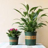 多肉綠蘿塑料花盆園藝種菜種花室內圓形