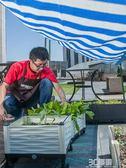陽台蔬菜種植箱 家庭菜園花盆 特大加深長方形組合 陽台種菜箱igo 3c優購