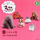全套6款【日本正版】休眠動物園 P3 扭...