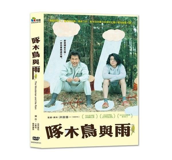 啄木鳥與雨 DVD (購潮8)