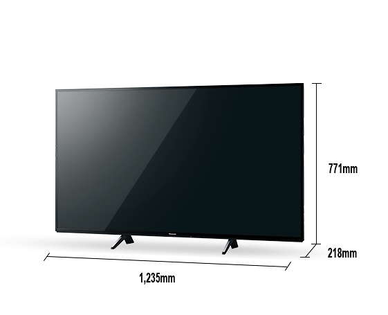 《Panasonic 國際牌》真•自然6原色 55吋 4K液晶電視 TH-55JX750W (含視訊盒)(安裝另計)
