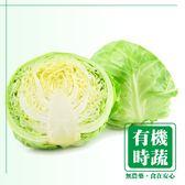 【有機認證生鮮時蔬】整顆高麗菜 (1200-1400g/ 顆 )