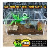 寵物飼養盒亞克力爬蟲箱蜘蛛蜥蜴守宮角蛙蛇蟒甲蟲302015爬寵盒 30*20*15  igo免運