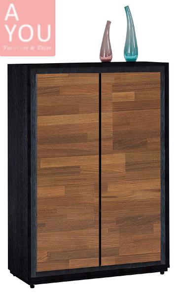 雷格2.7×4尺雙色鞋櫃(大台北地區免運費)【阿玉的家2020】