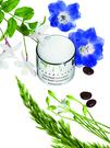 CHANTECAILLE 鑽石級眼霜+升級版 15ml