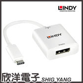 LINDY林帝 主動式 USB3.1 TYPE-C TO DISPLAYPORT 轉接器 (43245) 17CM/17公分