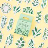 【BlueCat】綠園清晨植物盒裝 貼紙 手帳貼紙 (45枚入)