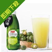 【即期良品】紅布朗 台灣香檬原汁 x1瓶 (300ml/瓶)_2019/7/11