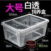 爬蟲箱 爬蟲飼養盒爬寵箱蠶寶寶守宮盒 魔法空間