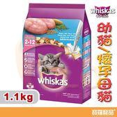 偉嘉幼貓/懷孕母貓貓乾糧1.1kg【寶羅寵品】