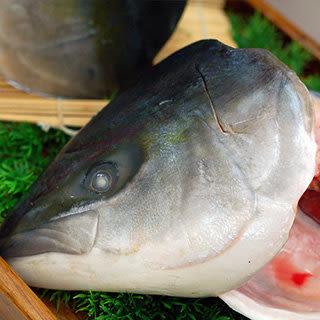 【屏聚美食】日本極鮮青魽魚頭6片組(350g~400g/片)