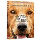 為了與你相遇DVD A Dog'...