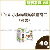 寵物家族-LOLO 小動物礦物質磨牙石(蘋果)40g