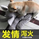公仔法斗柯基泰迪柴犬巴哥比熊陪睡伴侶寵物用品貓狗玩具發情發泄【非凡】