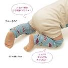 台灣現貨童裝 保暖襪套 日單藍色大蘑菇【A014】